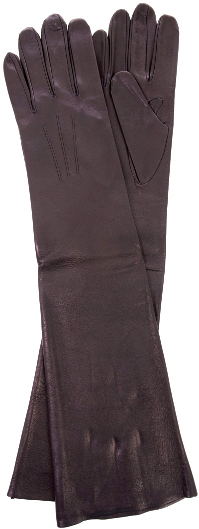The Rossini