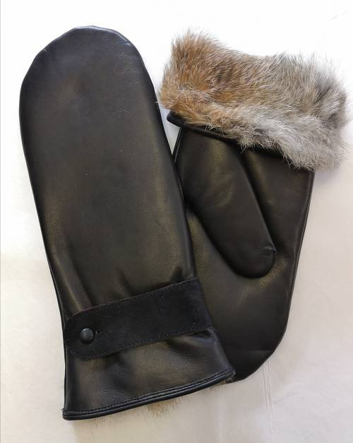 leather mitten